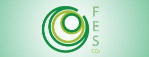 FES final